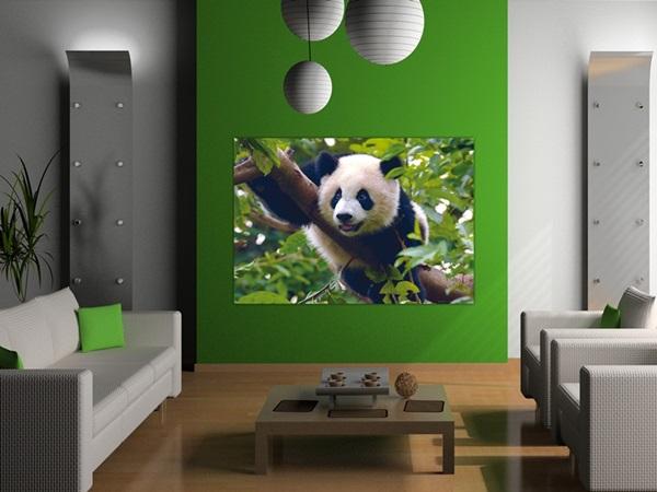 Mini Fotomural Panda FTM0810