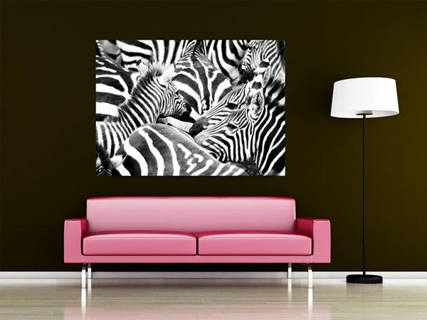 Mini Fotomural Zebra FTM0827