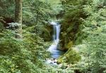 Mural Ref 00279 Waterfall in Spring