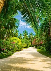 Mural Ref 00438 Tropical Pathway
