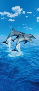 Mural de Porta Ref 00599 Golfinhos