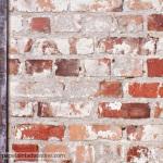 Papel de parede Freestyle Ref 102540