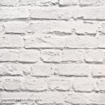 Papel de parede Freestyle Ref L22609