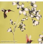 papel-de-parede-amazilia-harlequin-111061