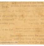 papel-de-parede-passport-psp-6660-20-75