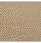 papel-de-parede-the-ardmore-senzo-spot-109-6029