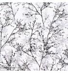 papel-de-parede-galhos-160d