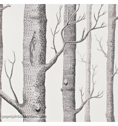 papel-pintado-contemporary-selection-woods-69-12147