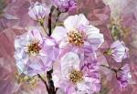 Fotomural Ref xxl4-064 blooming