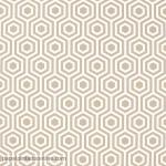 Papel de parede Geométrico Ref 949