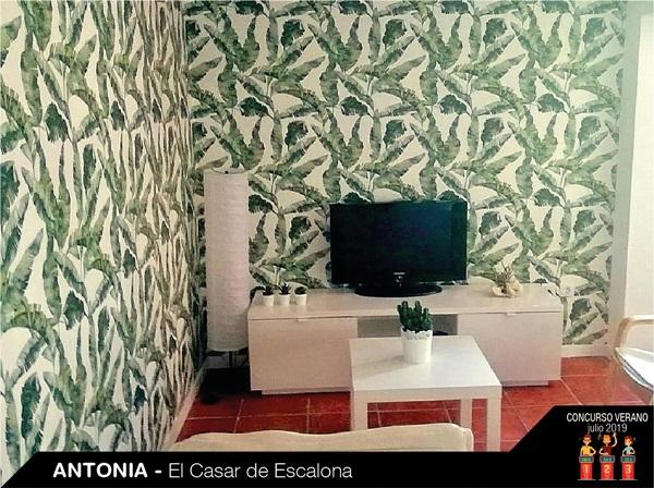 parede decorada com papel de parede natureza