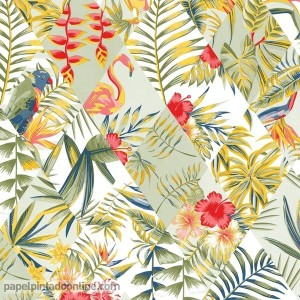 papel de parede aves e pássaros tropicais